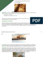 Topografia Basica_ Introducción e Historia de La Topografía