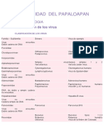 2.2_clasificasion de Los Virus_bichos