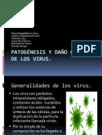 Pdf Patogénesis y daño celular de los virus.pdf