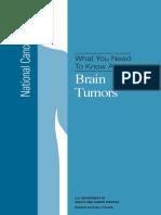 brain.pdf