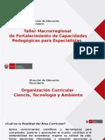 DIA 1 - Organizacion Curricular CTA