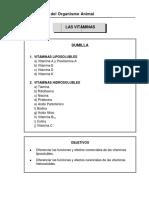 Capítulo  Vitaminas