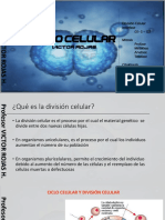 mitos 2 medio (1).pdf
