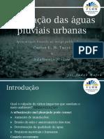 Adaptação de Artigo - Regulação Das Águas Pluviais Urbanas