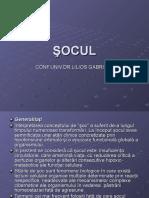ŞOCUL_.ppt