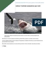 Bbc.com-Nada de Tubarões Ou Cobras 6 Animais Assassinos Que Você Talvez Não Conheça