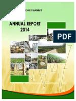 PTPN-II annual report 2014.pdf