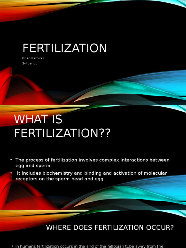 What Is Fertilization Fertilisation Ageing