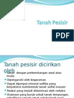 10. Tanah Pesisir.ppt