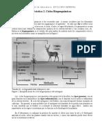 Práctica 2. Ciclos Biogeoquímicos