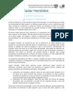 Labio y Paladar Hendidos revision de la bibliografia