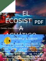richard_ecosistema_acuatico.pptx