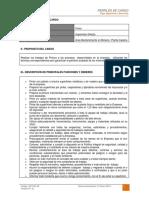 dct-001.in perfil de cargo pintor.pdf
