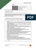 dct-001.in perfil de cargo representante de la gerencia.pdf