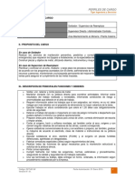 dct-001.in perfil de cargo soldador y supervisor de reemplazo.pdf