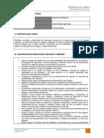 dct-001.in perfil de cargo supervisor dibujante.pdf