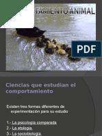 comportamientoanimal-120903104910-phpapp01