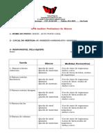 ACIDENTES - Análise Preliminar de Riscos