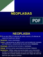 NEOPLASIA I 2012.ppt