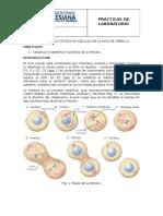 Práctica #2_Biolología II