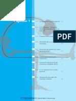 195105630-El-Concepto-Maitland-2010-pdf.pdf
