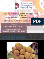 Presentation DOKONG