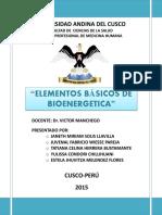Elementos Básicos de La Bioenergetic1