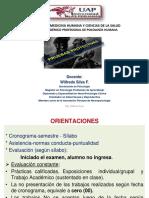 1 Histor Definic Proyectivas