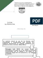 Diapositiva de Tesis Saccharina Para Imprimir