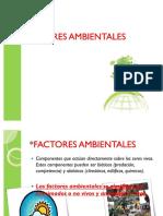 55768340-FACTORES-AMBIENTALES (1).pdf