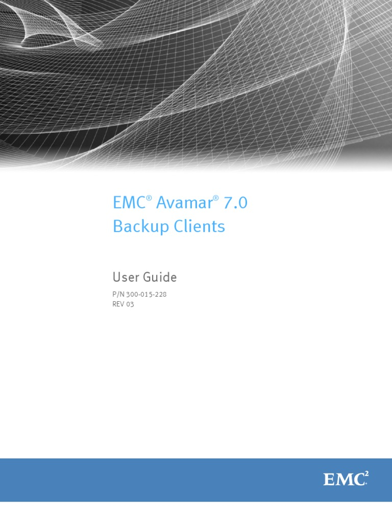 Docu48223 Avamar 7 0 Backup Clients User Guide | Web Server | Domain