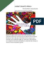 Diversidad Cultural en México