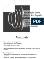 Pathology of the Tricuspid Valve
