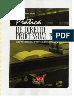 Dto Processual Penal (Práticas) 2010 - Paula Andrade