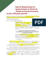 Modelo de Ação de Regularização de Guarda e Regulamentação Do Direito de Visitas Com Pedido de Guarda Provisória Ao Pai e Alienação Parental