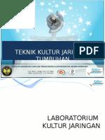 Daskuljar2 Media