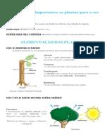 Porque são importantes as plantas para o ser humano.pdf