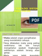 Anatomi-fisiologi Mata Dr Dennis