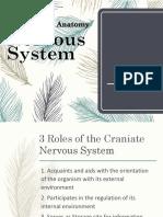 Group 4 - Nervous System