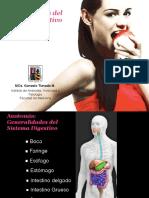 Generaldades Sistema Digestivo