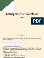 Managementul proiectelor mici