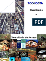 Classificacao e Filogenia 2015