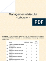 Managementul Riscului (Lab)