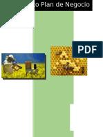 Proyecto Plan de Negocio Apicola - Final