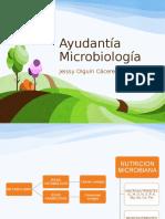 Ayudantía Microbiología