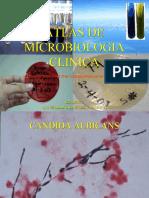 Atlas Microbiologia Clinica