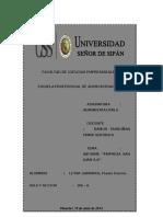 INFORME - EMPRESA AGROINDUSTRIAL ''SAN JUAN''.docx