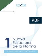 Ficha 1 Estructura Claves Norma 14001