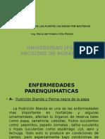Enfermedades de Las Plantas Causadas Por Bacterias (1 Clase)