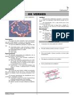 07-Os vermes.pdf